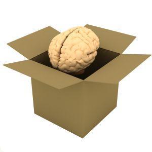 Joonis, mis kujutab papist kasti ja selle sisse asendatud inimaju