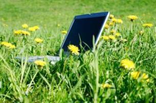 Sülearvuti rohelisel aasal, kollased lilled selle ümber