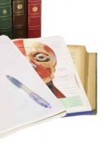 Esiplaanil on vihik, pastapliiats ja inimpea anatoomiline skeem, tagaplaanil on raamatud