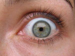Inimese pärani avatud silm